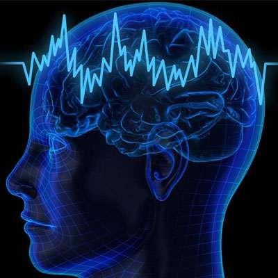 Aluguel de Equipamentos EEG