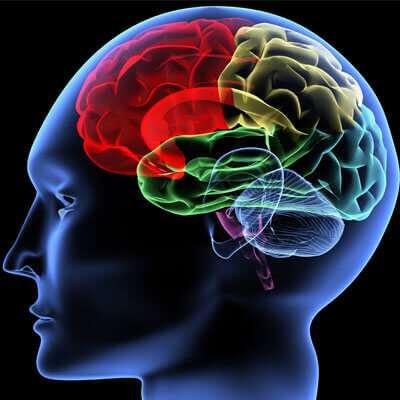 Mapeamento Cerebral